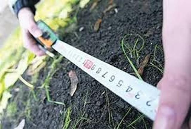 Мораторий на реализацию сельхозземель продлили до 2018г