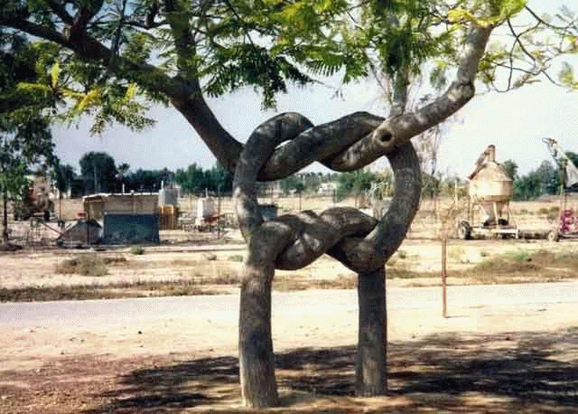 arboskulptura-7