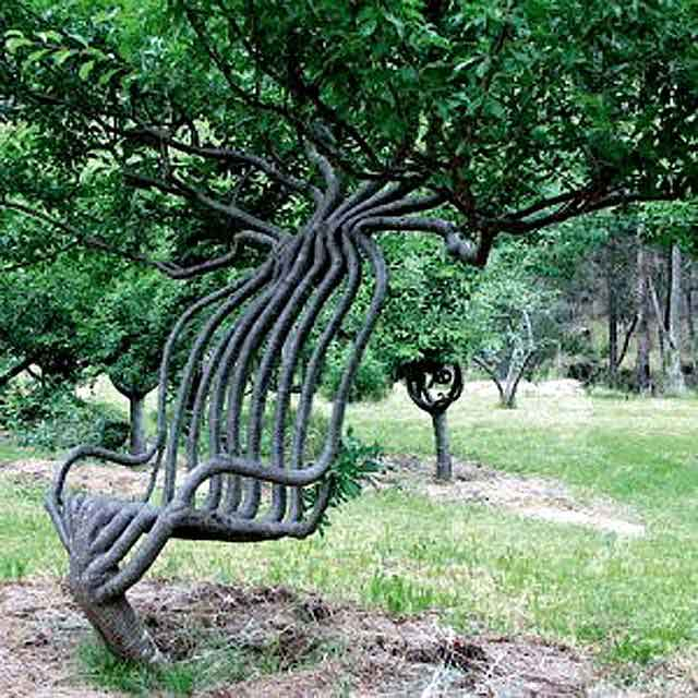 arboskulptura-1