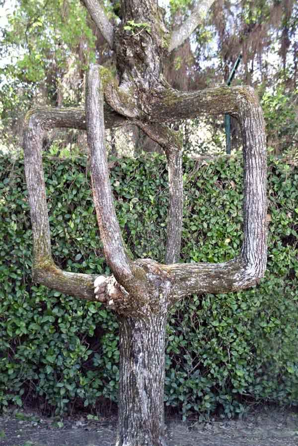 arboskulptura-9