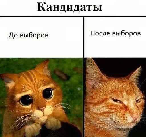 anekdot-1