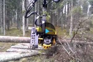Робот-лесоруб