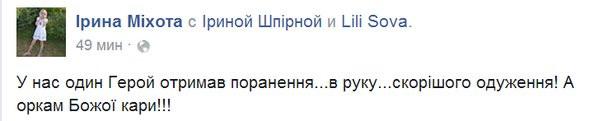 Марьинка раненый