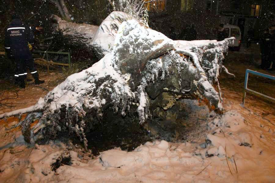 snegopad-spasateli-2