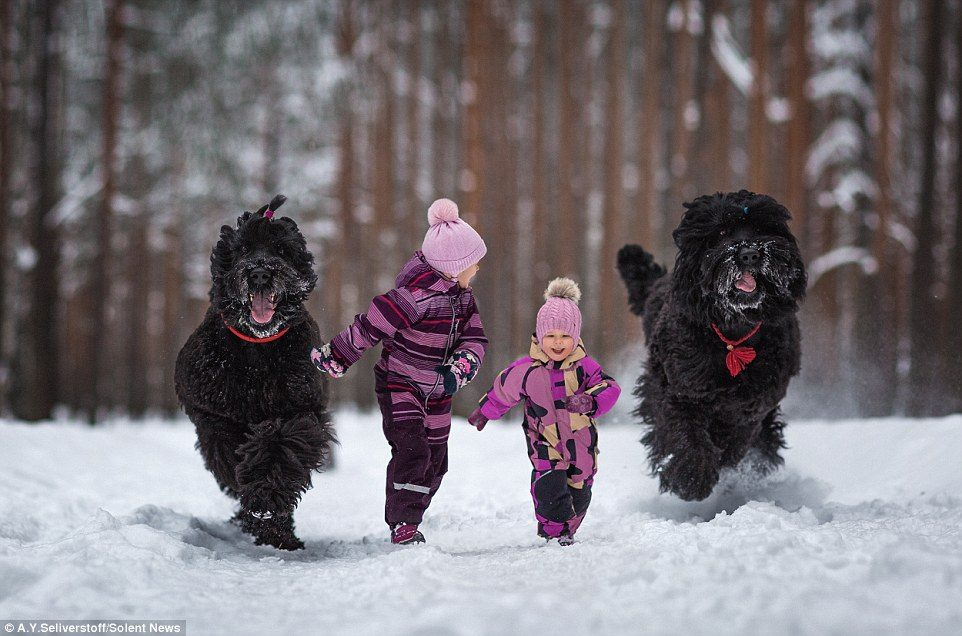 dogs-and-kids-9