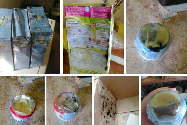 12 поликлиника москва на комарова