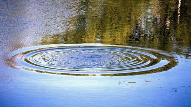 Тела сразу 3-х утопленников обнаружили возере вВинницкой области— чудовищная находка