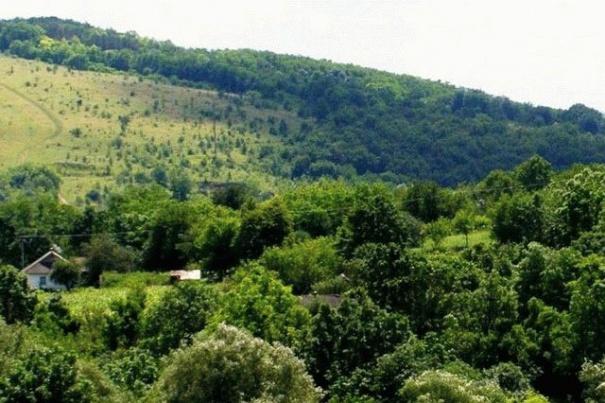 В каньонах Винничины создали четыре новых заповедника, фото-1